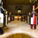 Вино АЛьбано.Апулия