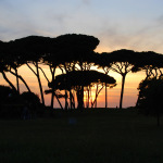 italiaunica-toscana (485)